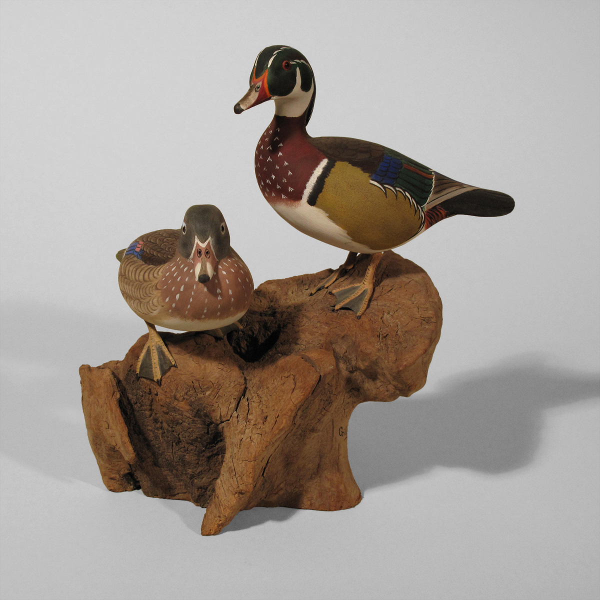 Wood Duck, Pair
