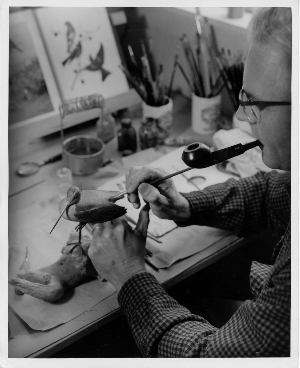 Wendell Gilley Painting a Godwit